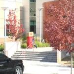 stericycle-servicing-denver-stapleton-abortion-mill-201110211246-12